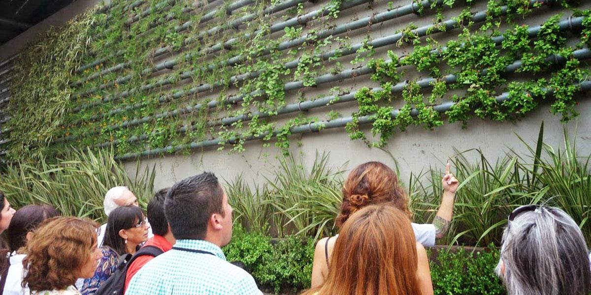taller de jardines verticales
