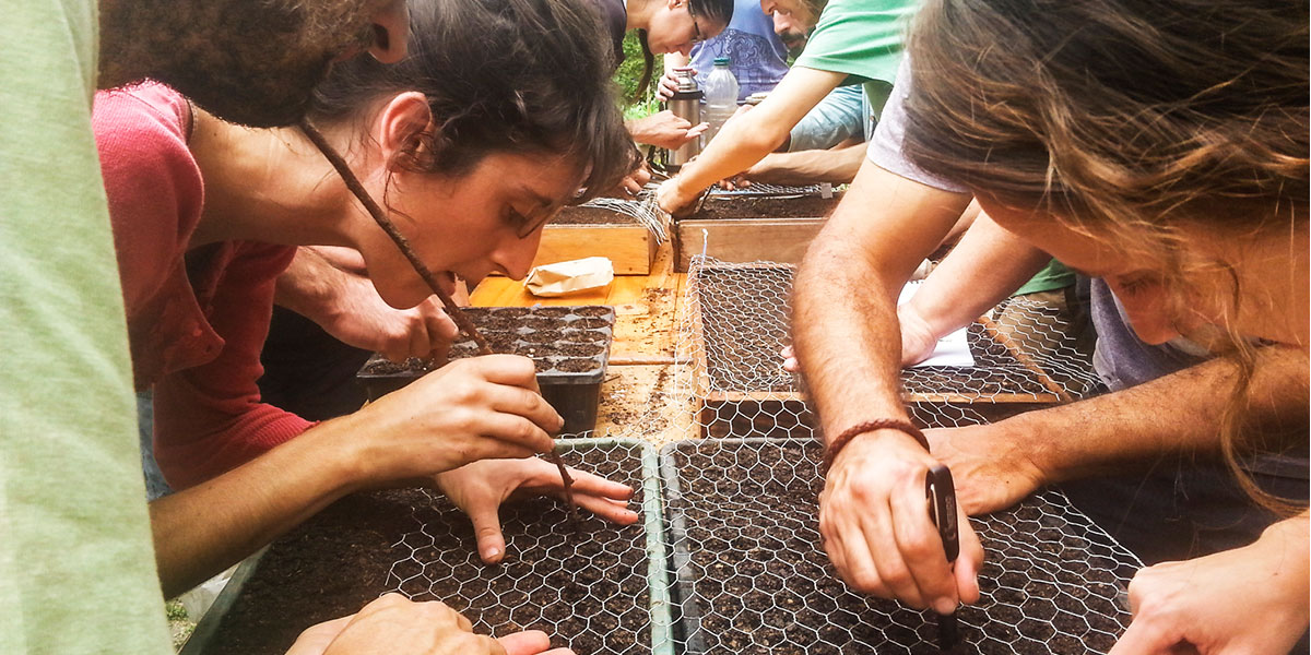 taller huerta orgánica biointensiva