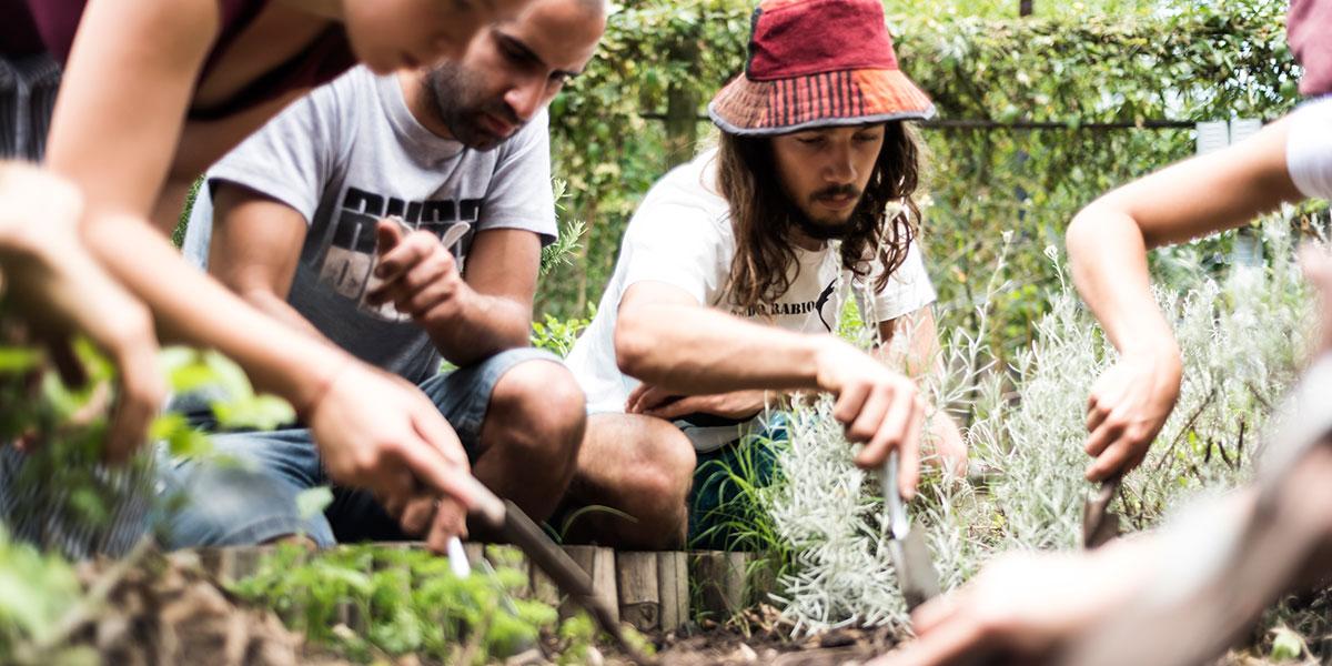 taller semanal huerta agroecológica